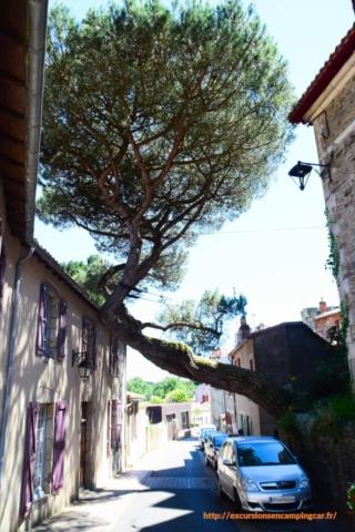 """Balade dans les rues de Clisson """"l'italienne"""""""