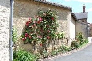 DSC 0121 Aubigné-sur-Layon