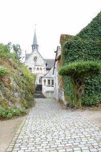 DSC_0007 - Ile de Béhuard