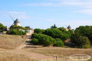 Les moulins de la Guérinière un matin d'octobre, Noirmoutier