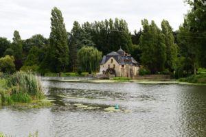 DSC 0053-Parcé sur Loire