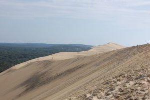 DSC_0021 Dune du Pilat
