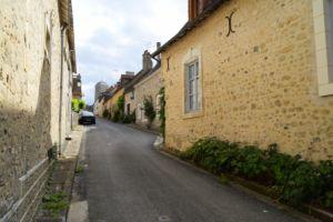 DSC 0023-Parcé sur Loire