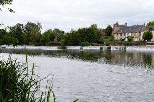 DSC 0040-Parcé sur Loire