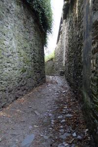 DSC 0025-Segré-en-Anjou