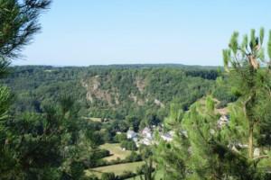 DSC 0056-Saint-Leonard-des-Bois